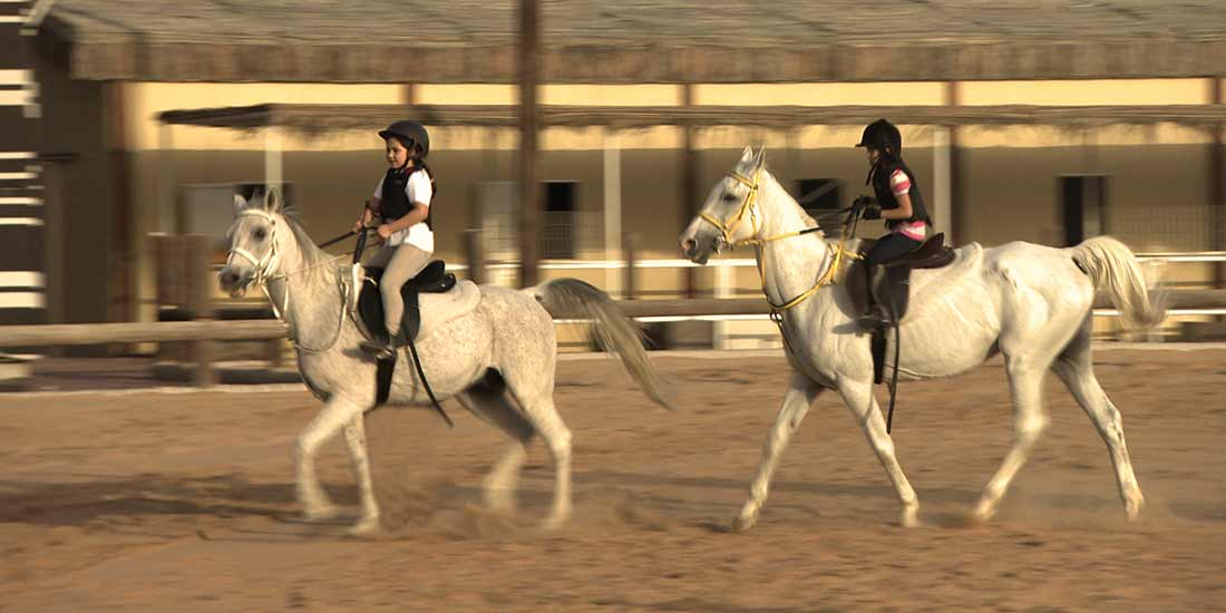 4 Horse Back Riding Lessons